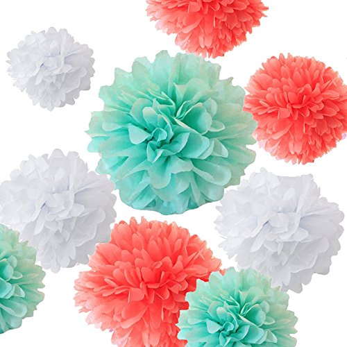 Fonder Mols 12pcs Art Craft Pom Poms Tissue Paper Flowers Ball Kit  Coral Mint Green amp White  Mixed Sizes 8#039#039 10#039#039 12#039#039 14#039#039