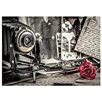 DIY5Dダイヤモンドペインティングキットフルドリルフラワーカメラモザイクラインストーンクロスステッチクラフト大人と初心者ラウンドダイヤモンドアーツクラフト家の装飾40X50Cm