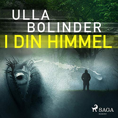 I din himmel audiobook cover art