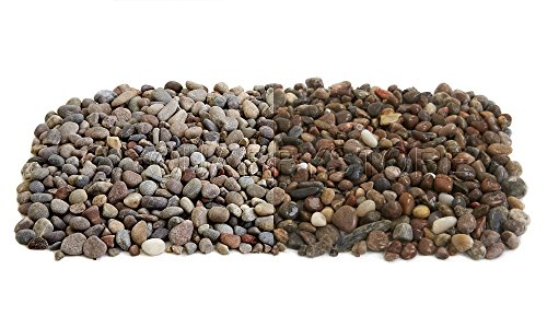 Quarrystore Assorted Scottish Beach Pebbles from 8mm to 14mm in Size - Ideal Outside Decorative Stones for Gardens and Craft Projects - 20kg Bag