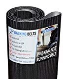 WalkingBeltsLLC - PFTL995130 ProForm Power 995i Treadmill Walking Belt + Free 1oz Lube