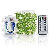 Lichterkette Batterie mit Timing-Funktion,3 Meter 40 LEDs Beleuchtung mit Fernbedienung Warmweiß 8 Modi Silberdraht Dekoration - Blätter Lichterkette Batteriebetrieb