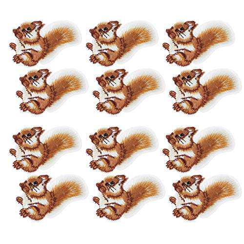 SALUTUYA DIY Arts Craft Coser, con 12 Piezas, patrón Transparente de Squieel, para Arreglar Ropa