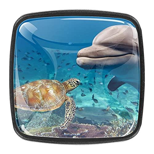 4 pomos cuadrados para gabinetes de coche, gabinetes de cocina o palancas de cajón, delfín, tortuga marina bajo el agua