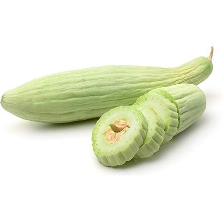 PaleLight variety 20 Armenian Cucumber Grown in USA Free ship