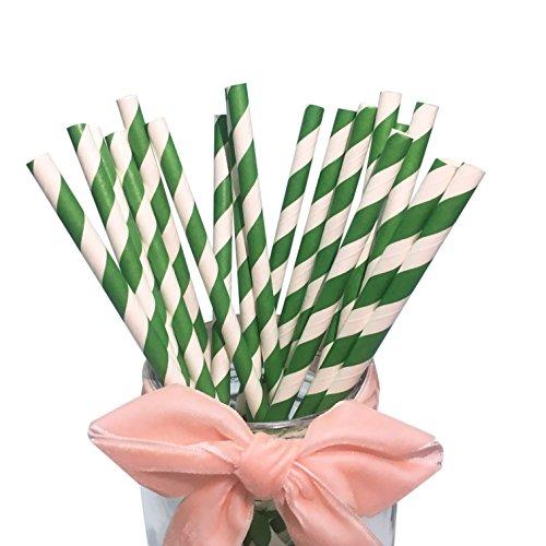 BOFA Green Stripe Papierstrohhalme, 100% biologisch abbaubar 20 cm/7.87 zoll lang Geeignet für Partys, Hochzeiten und Anlässe, Schachtel mit 100 Stück