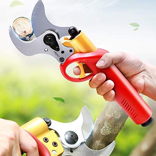 RENXR Soutiers Professional Tree Sécateur, Sécateur Électrique, avec Batterie Rechargeable, Remplacement De La Lame Forte Garden Rose Fruit Apple Tree Branches