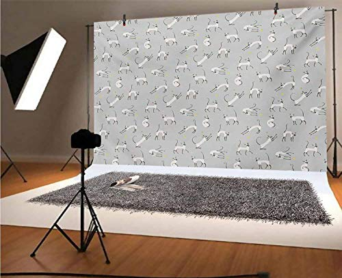 Fondo de vinilo gris para fotógrafos, diseño de gato siamés en la...