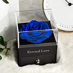 Silk Flower Arrangements Yamonic Mothers Day Mom Gifts Roses with Heart Love You Necklace in 100 Languages Gifts for Mom Wife Her Mother's Day Birthday Gifts for Women, Eternal Love Real Preserved Rose, Blue