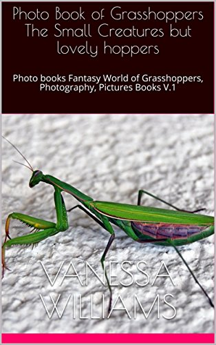 Photo Book of Grasshoppers The Small Creatures but lovely hoppers: Photo books Fantasy World of Grasshoppers, Photography, Pictures Books V.1 (insects world) (English Edition)