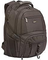 AmazonBasics Premium Backpack...