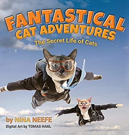 Fantastical Cat Adventures
