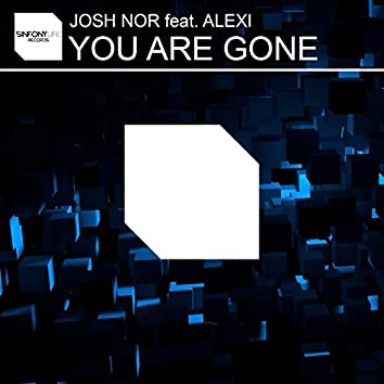You Are Gone (feat. Alexi)