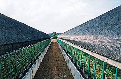 ダイオ化成 遮光フィルム ダイオシート 14号 農業ハウス用 遮光率約90~95% 黒 巾2m×長さ50m