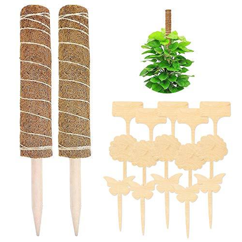 Yisscen 40 cm Palo de Planta de Coco 2 Piezas Poste de Musgo Palo de Musgo con 15 Piezas Etiquetas de Madera para Plantas para Enredaderas Soporte de Plantas Extensión Escalada Plantas de Interior
