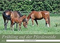 Fruehling auf der Pferdeweide (Wandkalender 2022 DIN A2 quer): Die eleganten Hannoveranerstuten praesentieren hier stolz ihre Jungtiere (Monatskalender, 14 Seiten )