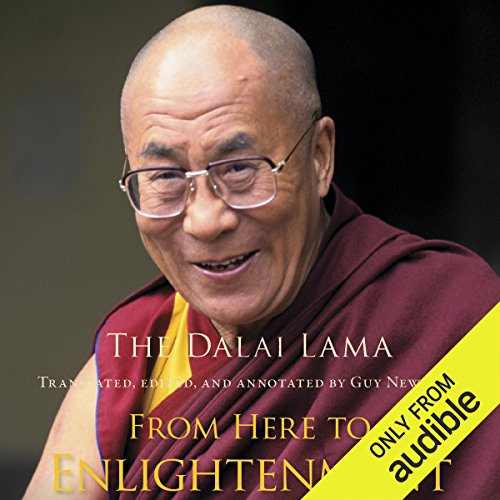From Here to Enlightenment audiobook cover art