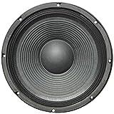 Altavoz difusor de audio maestro PA10/8 PA 10/8 de diámetro 25,00 cm 250 mm de 300 W RMS y 600 W de máxima impedancia 8 ohm casa DJ DISCO Party SENSITIVIDAD 93 dB