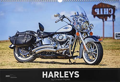Harleys 2019 - Bildkalender quer (50 x 34) - Technikkalender - Fahrzeuge - Motorrad-Kalender: by Christian Popkes