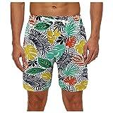 Pantalones Cortos Hombre Deporte SHOBDW 3D Impresión Verano Pantalones Cortos De Playa 2021 Nuevo Casual Pantalones Hombre Chandal Cordón Elástico Cortos Aptitud Tallas Grandes (Multicolor, L)