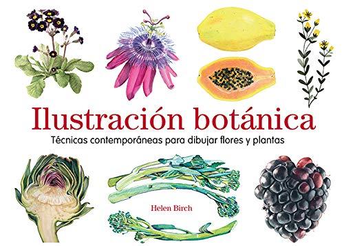 Ilustración botánica. Técnicas contemporáneas para dibujar flores y plantas