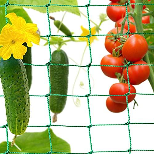 Sporgo Pflanzennetz,Ranknetz mit Großer Maschenweite,Premium Gartennetz Rankhilfe Gemüsepflanzen Netz für Garten,Kletterpflanzen,Gurken,Tomaten und Rankhilfen (3.6 x 1.8 M)