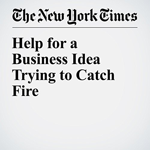 Help for a Business Idea Trying to Catch Fire audiobook cover art