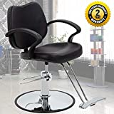 Salon Chair Barber Chair Styling