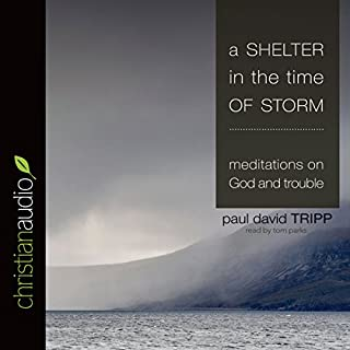 A Shelter in the Time of Storm cover art