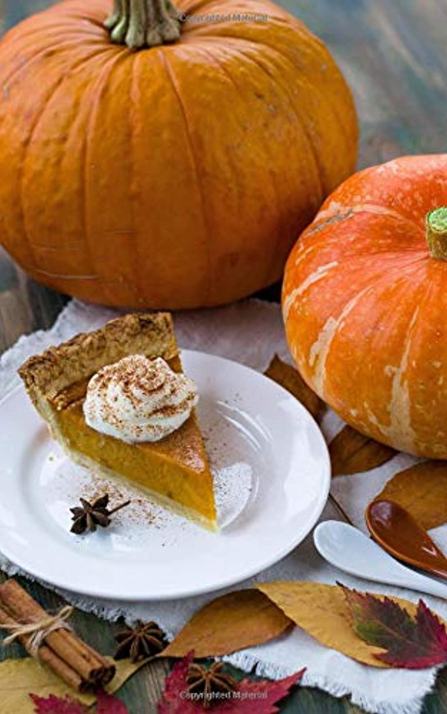 色合いオーブン成功Thanksgiving Journal: 5