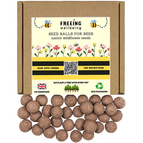 FREEING WELLBEING – Bee & Butterfly Seed Bombs Balls – UK Native Wildflower Meadow Gardening Seeds Mix Box – Covers 40 sq ft
