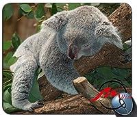 ZMviseオーストラリアコアラ背景ファッション漫画マウスパッドマットカスタム四角形ゲームマウスパッド
