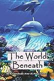 The World Beneath: The Extraordinary Story Of Ocean Science: Marine Life Books