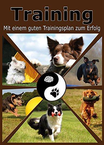 Hundetraining Training mit einem guten Trainingsplan zum Erfolg