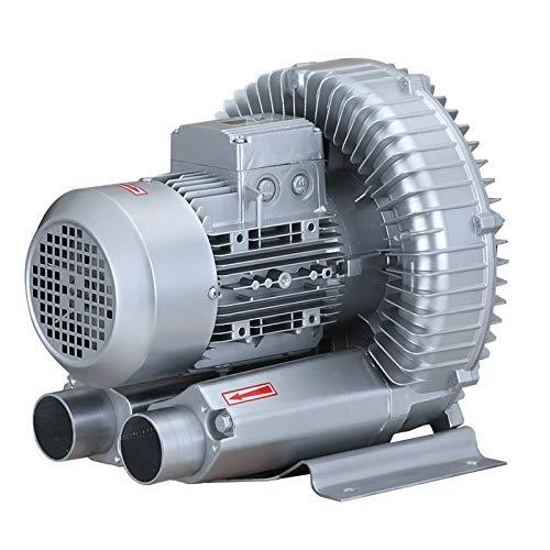 LAY Ventilateur, Haute Puissance Ventilateur Industriel À Tourbillon À Haute Pression Ventilateur Centrifuge Puissant Pompe À Air À Tourbillon du Ventilateur Silencieux Ventilateur 220V,1