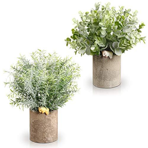 FOREDOO Plantes Artificielles en Pot – Mini Fausses Plantes en Plastique, Eucalyptus, Romarin Plante Deco d'intérieur, Petite Verdure pour Cuisine, Bureau (Vert-A)
