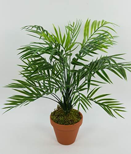 Seidenblumen Roß Zimmerpalme/Palmenbusch 42cm im Topf GA aus Kunststoff Kunstpflanzen Kunstpalmen künstliche Blumen Pflanzen Palme Dekopalme