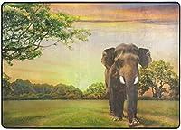サンセットエリアラグの象、リビングダイニングルームのベッドルームキッチン用ラグ、5'X7'保育園ラグフロアカーペットヨガマット