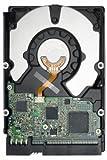 Seagate ST3750840AS - Disco duro interno (750 GB, 750 GB)