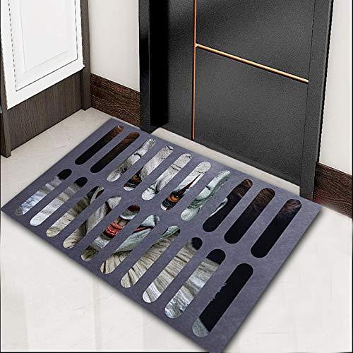 NOBCE Tapetes de Alfombra Cubierta de alcantarilla Alfombra de Payaso Caras Divertidas Creativas Sala de Estar Dormitorio Tapete de Entrada 50X80CM