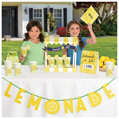 Mini Lemonade Stand Decorating Kit - Banner, Tent Card, Table Decoration, Money Envelope and Stickers