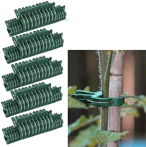 Lot of 100 Small & Large Reusable Garden Plant, Vegetable & Flower Clips, Patio Support Fixing Clips, Spring Gardening Set - Secure Plants To Frame Trellis