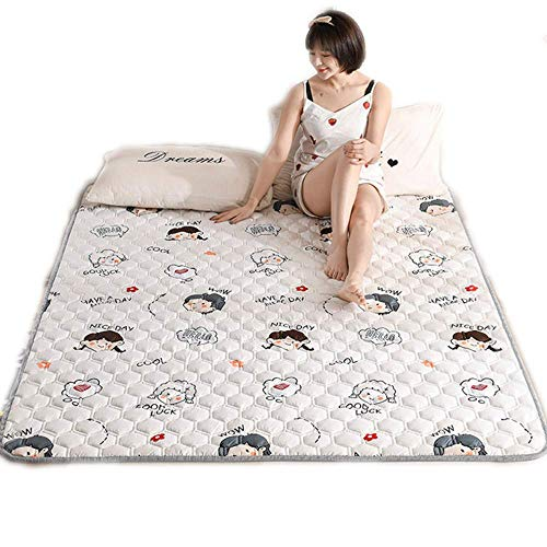 Zixin Summ Thin Tatami Kang Pad Washable Double Non-Slip Bed Mattress Pad Folded by The Home, Non-Slip Comfortable Sleep Protection Pad,90 * 200cm (Size : 200 * 220cm)