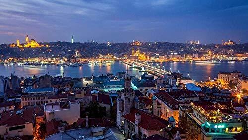 Alicest3D DIY Digitales Malen nach Zahlen Türkei Istanbul Blick auf die Stadt bei Nacht Moderne Wandkunst Leinwand Malerei Weihnachten Einzigartiges Geschenk Wohnkultur 40 * 50Cm