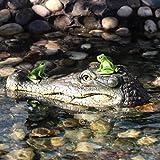 Eruditter Krokodilkopf Schwimmend Reptil Gartendeko Krokodilkopf Für Gartenteich, Kunststoff, Braun 13'x 6' X 3'