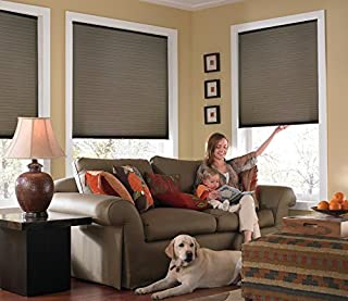 Windowsandgarden Custom Cordless Single Cell Shades, 24W x 46H, Espresso, Any Size 21-72 Wide and 24-72 High