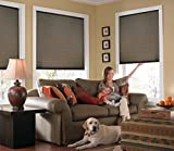 Windowsandgarden Custom Cordless Single Cell Shades, 24W x 72H, Espresso, Any Size 21-72 Wide and 24-72 High