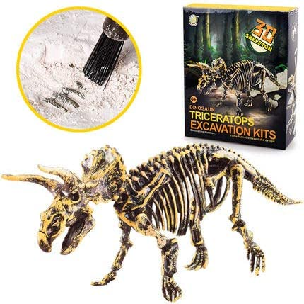 Liberty Imports Dinosaur Skeleton 3D Dino Fossil Bones Excavation Science Kit