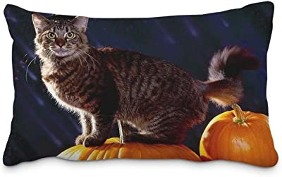 Festival Halloween Pillow Case With Zipper 20x36inch(2 Sides) Standard Home Decorations Pillow Cushion
