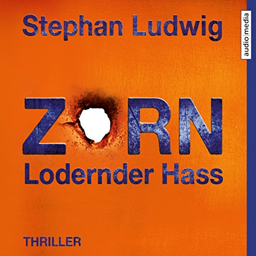 Zorn: Lodernder Hass audiobook cover art